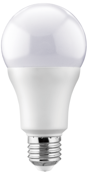 A65 15W Bulb